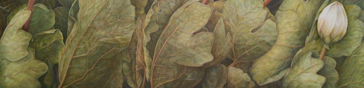Bloodroot 5 2016 oil on wood panel 18 x 48